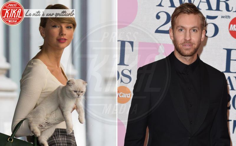 Taylor swift calvin harris il problema il gatto for Gatto che starnutisce