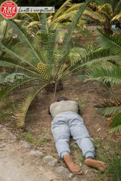 Performer - Palermo - 23-04-2015 - Raìces: l'uomo come gli alberi affonda le radici a terra