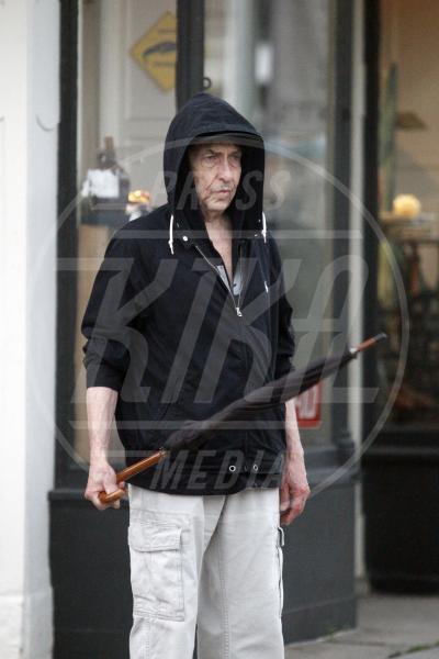 Bob Dylan - New Orleans - 28-04-2015 - Bob Dylan, americano di nascita, inglese d'adozione