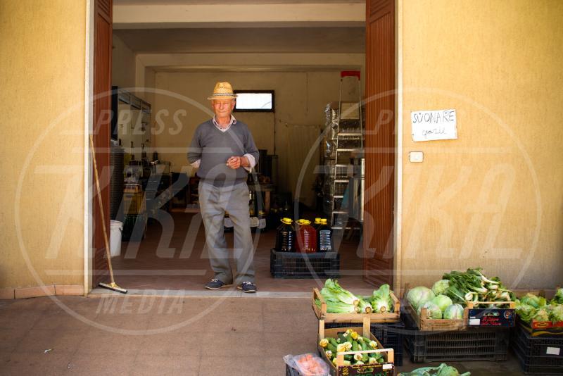 Vito Sarcinella - Sannicola - 10-05-2015 - Xylella, la piaga del Salento: santoni e scienziati si sfidano