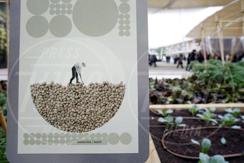 Expo 2015 - Milano - 01-05-2015 - Expo 2015: ecco il Padiglione Italia e l'Albero della Vita