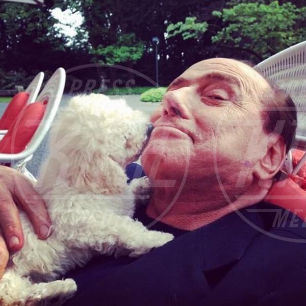 Dudina, Silvio Berlusconi - Milano - 21-05-2015 - McDonald's: al tavolo c'è Silvio Berlusconi