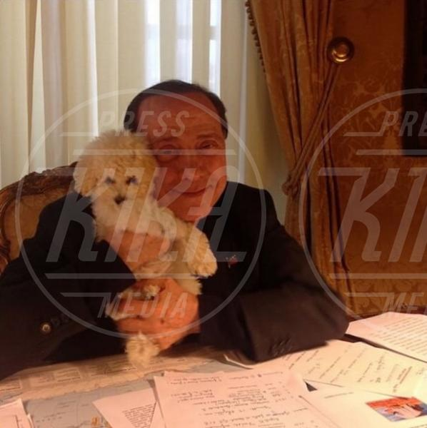 Silvio Berlusconi - Milano - 21-05-2015 - McDonald's: al tavolo c'è Silvio Berlusconi