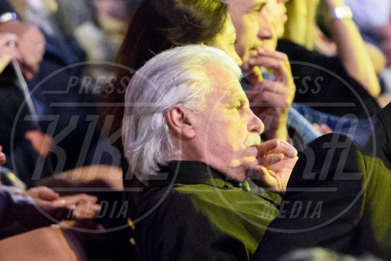 Michele Placido - Verona - 29-05-2015 - Al Bano e Romina di nuovo insieme in Italia dopo 20 anni