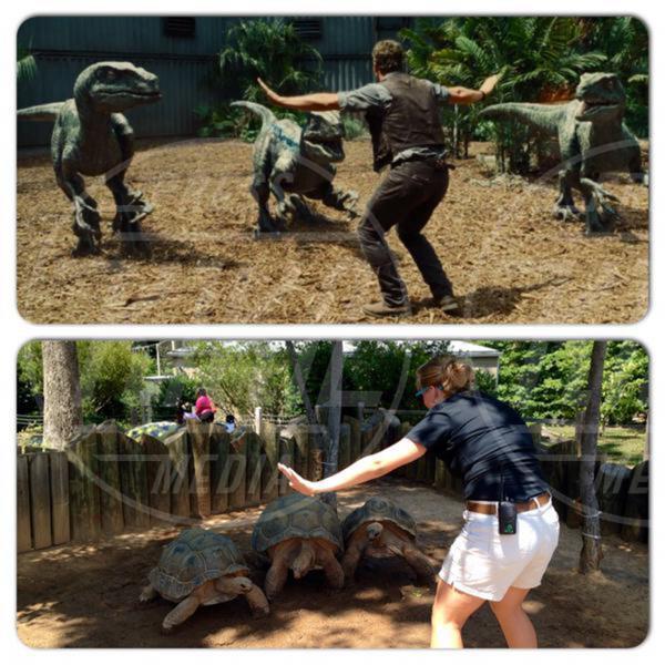 Jurassic World - Los Angeles - 21-06-2015 - Pratt ferma i dinosauri in Jurassic World e diventa virale