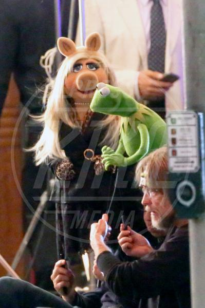 Kermit the Frog, Miss Piggy - Los Angeles - 07-08-2015 - Sale l'attesa per il debutto in Italia di The Muppets - la serie