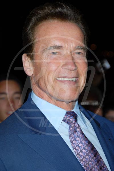 Arnold Schwarzenegger - Los Angeles - 27-01-2010 - Impavidi anche nel quotidiano. I vip eroi nella vita reale