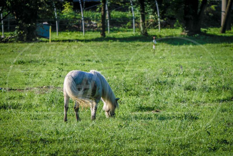 Discarica Albino - Albino (BG) - 08-09-2015 - Montichiari e Albino, la Terra dei Fuochi del profondo Nord