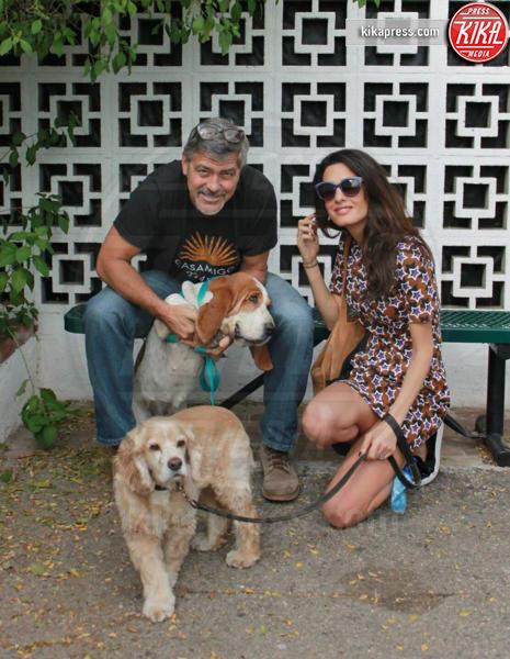 Amal Alamuddin, George Clooney - Hollywood - 29-10-2015 - George Clooney pensa alla Casa Bianca
