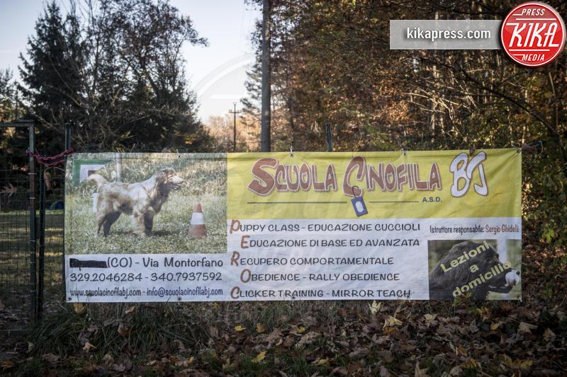 Scuola Cinofila BJ - Milano - 08-11-2015 - Amici quattrozampe contro il diabete: ecco come aiutano i malati