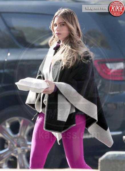 Sofia Vergara - Los Angeles - 16-12-2015 - Star come noi: il pasto si porta da casa
