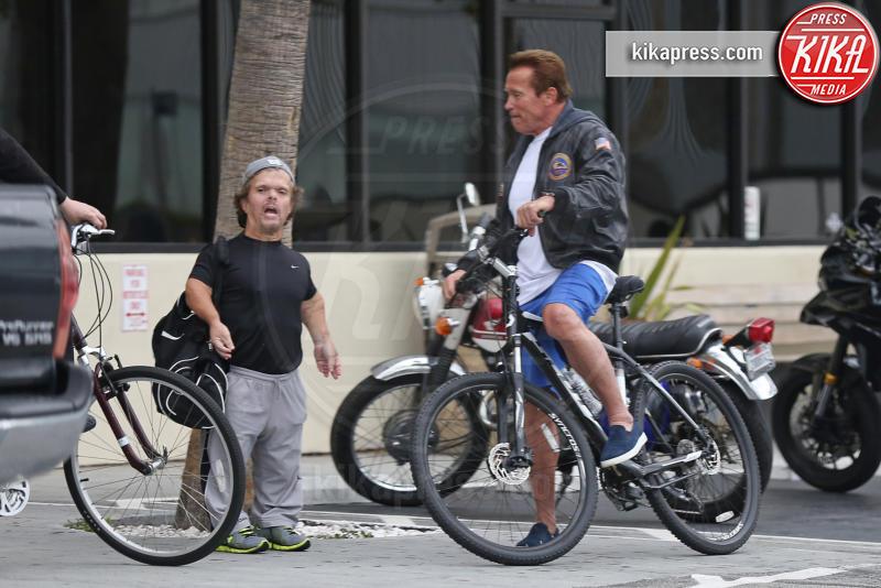 Arnold Schwarzenegger - Venice - 13-04-2016 - Arnold Schwarzenegger in versione Gemelli 27 anni dopo