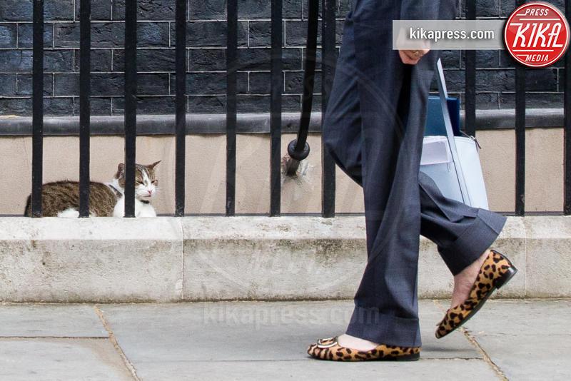 Il gatto Larry - Londra - 12-07-2016 - Resta a casa Larry: il gatto di Downing Street non trasloca