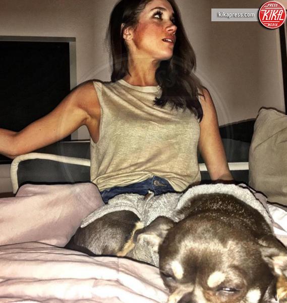 Meghan Markle - Hollywood - 01-11-2016 - Il Principe Harry convolerà a nozze con Meghan Markle