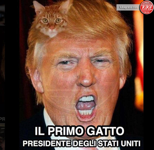 Meme Donald Trump - Hollywood - 16-11-2016 - Trump Presidente: le meme più divertenti