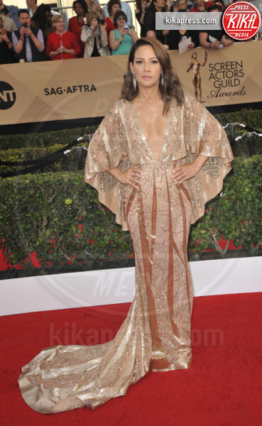 Elizabeth Rodriguez - Los Angeles - 30-01-2017 - 2017: ecco le peggio vestite dell'anno