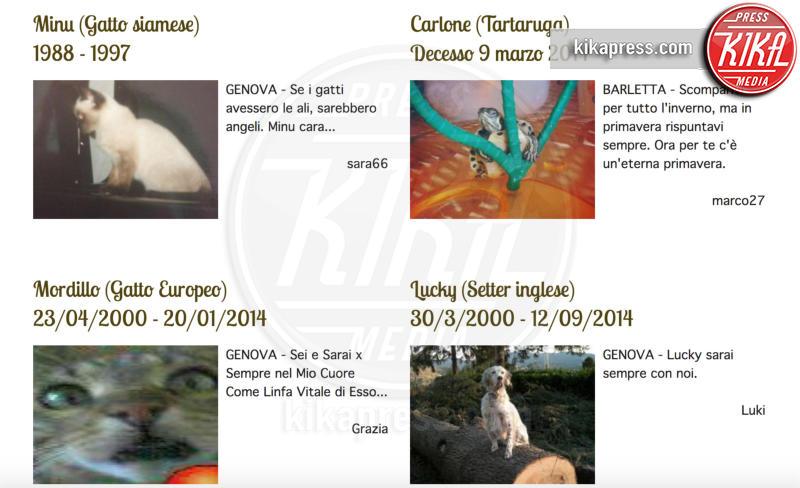 cimitero animali - Genova - 21-02-2017 - Un funerale per l'ultima carezza all'animaletto di una vita