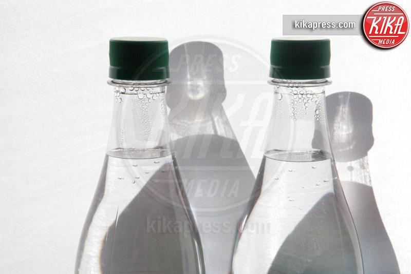 Two bottles of mineral water - 12-05-2017 - Alla scoperta della dieta di Meghan Markle