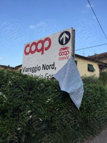 Riccardo Corredi - Viareggio - Riccardo Corredi lancia il materasso vegan e scoppia la polemica