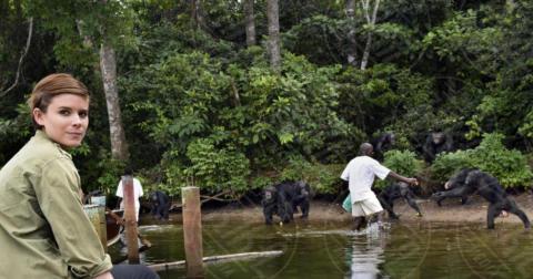 Kate Mara - Monrovia - 09-03-2016 - Le sorelle Mara animaliste: viaggio in Liberia per 60 scimpanzé