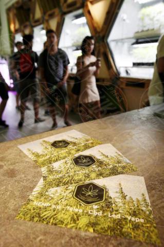 Hemp Embassy, Alberto Valsecchi - Milano - 15-06-2017 - A Milano il primo negozio che vende marijuana in Italia