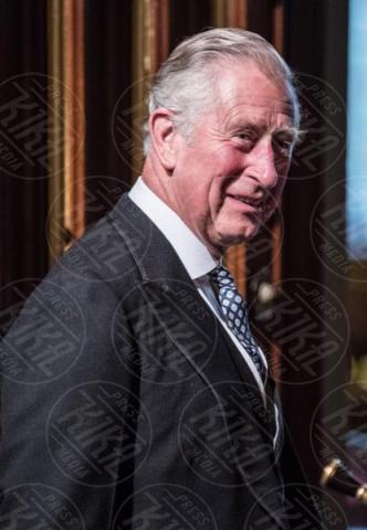Principe Carlo, Principe Carlo d'Inghilterra - Londra - 21-06-2017 - Elisabetta II ha l'Europa in testa all'apertura del Parlamento?
