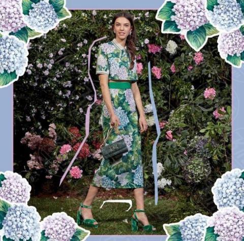 #DGortensia - Il fiore dell'estate? L'ortensia, quella di Dolce & Gabbana