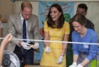 Principe William, Kate Middleton - Heidelberg - 20-07-2017 - Kate Middleton, abito giallo e... grembiule!