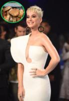 Katy Perry - Inglewood - 27-08-2017 - Vuoi essere in forma come Beyonce? Ecco il suo segreto