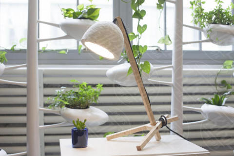 Grow Lamp - Inconnu - 11-05-2017 - Grow Lamp: la lampada eco che deriva dai funghi e cresce da sola