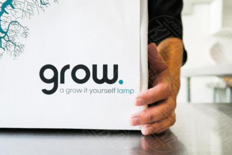Grow Lamp - Inconnu - 20-08-2017 - Grow Lamp: la lampada eco che deriva dai funghi e cresce da sola