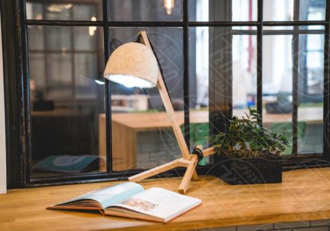 Grow Lamp - Inconnu - 06-09-2017 - Grow Lamp: la lampada eco che deriva dai funghi e cresce da sola