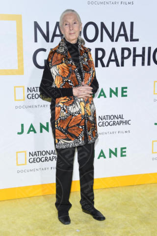 Jane Goodall - Hollywood - 09-10-2017 - Time 2019, la classifica delle star più influenti
