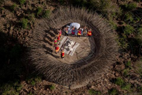 Nido d'uccello - Kenya - 23-10-2017 - Ecco la villa a nido d'uccello che vi farà sentire un volatile