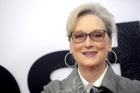 Meryl Streep - Washington - 14-12-2017 - Un tempio immerso nel verde: entrate nella casa di Meryl Streep