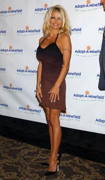 Pamela Anderson - Century City - 15-10-2004 - Gli attori di Baywatch: com'erano ieri e come sono oggi