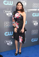 Amy Landecker - Santa Monica - 11-01-2018 - Critics' Choice Awards: sul red carpet si rivedono... i colori!
