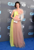 Mary Elizabeth Winstead - Santa Monica - 11-01-2018 - Critics' Choice Awards: sul red carpet si rivedono... i colori!