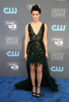 Jaimie Alexander - Los Angeles - 11-01-2018 - Critics' Choice Awards: sul red carpet si rivedono... i colori!