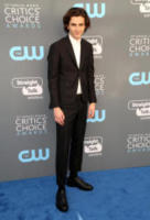 Timothée Chalamet - Los Angeles - 11-01-2018 - Critics' Choice Awards: sul red carpet si rivedono... i colori!