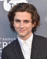 Timothée Chalamet - Santa Monica - 11-01-2018 - Critics' Choice Awards: sul red carpet si rivedono... i colori!