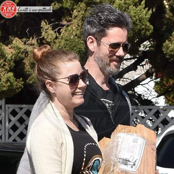Darren Le Gallo, Amy Adams - West Hollywood - 26-02-2018 - Star come noi, Amy Adams compra la legna per il suo camino