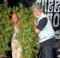 Tommy Chong, Cheech Marin - Los Angeles - 30-07-2008 - 10 star che non pensavi fumassero marijuana