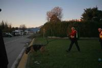 ragazza scomparsa, Yara Gambirasio - Bergamo - 29-11-2010 - Yara Gambirasio: un mistero lungo quattro anni