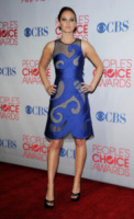 Jennifer Lawrence - Los Angeles - 11-01-2012 - Bradley Cooper in un altro film con Jennifer Lawrence