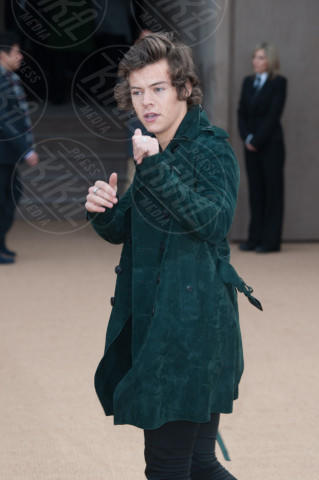 Harry Styles - Londra - 17-02-2014 - Eleganza e vista mozzafiato: ecco la la villa di Harry Styles