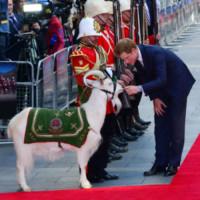 Principe Harry - Londra - 10-06-2014 - Il Principe Harry, l'uomo che fissava le capre