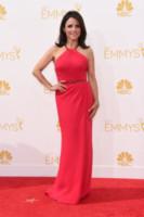 Julia Louis-Dreyfus - Los Angeles - 26-08-2014 - Emmy Awards 2014: è il rosso il colore dominante