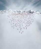 Scalatori, Alpi Bernesi - Bernese Alps - 30-09-2014 - Ecco cosa un drone (e un team di escursionisti) possono fare