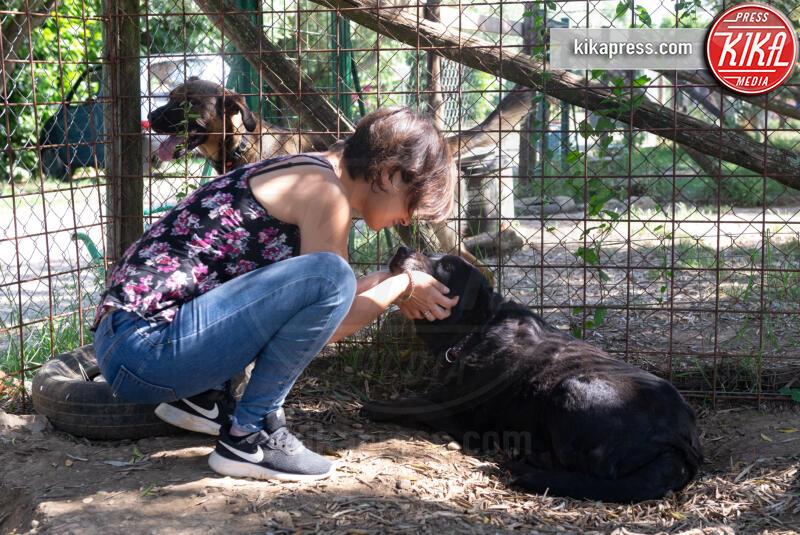 Baffi d'Argento, Daniela Salvi, Clara - Roma - 19-06-2019 - Baffi d'Argento: la prima casa di riposo per cani orfani